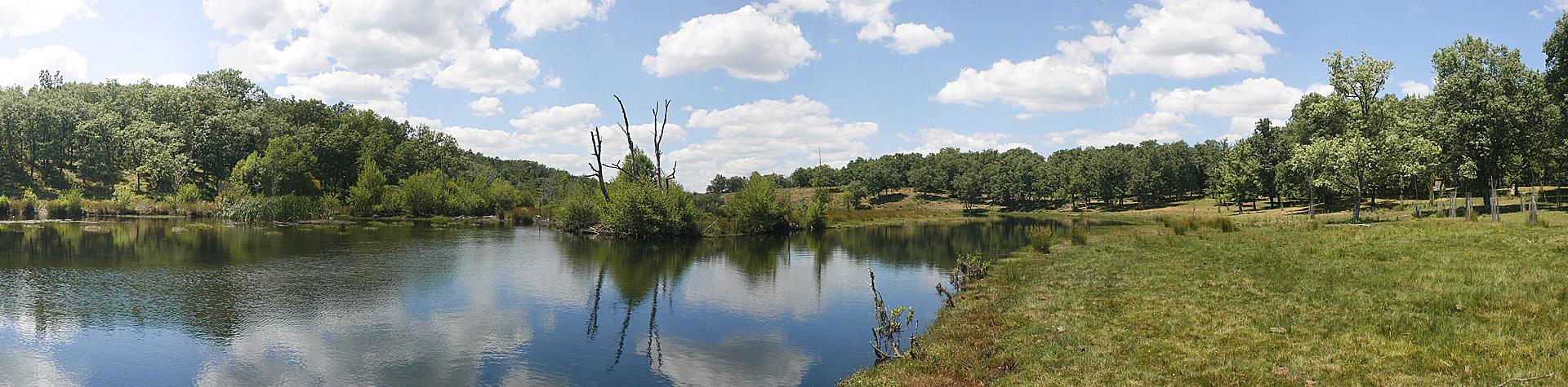 Ribera del Payo 1